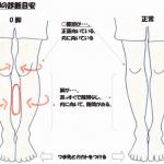 okyakukyousei[1]