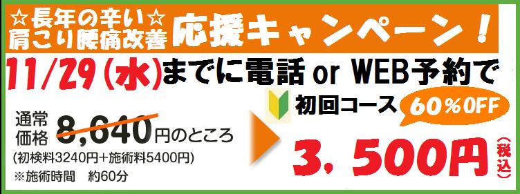 11月29日3500円バナー